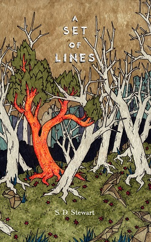 A Set of Lines cover